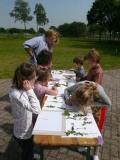 Moerenburg groen