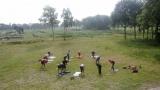 Yogalessen op de waterzuivering